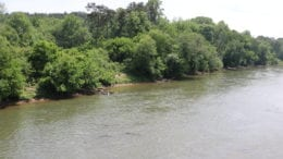 bank of Chattahoochee River