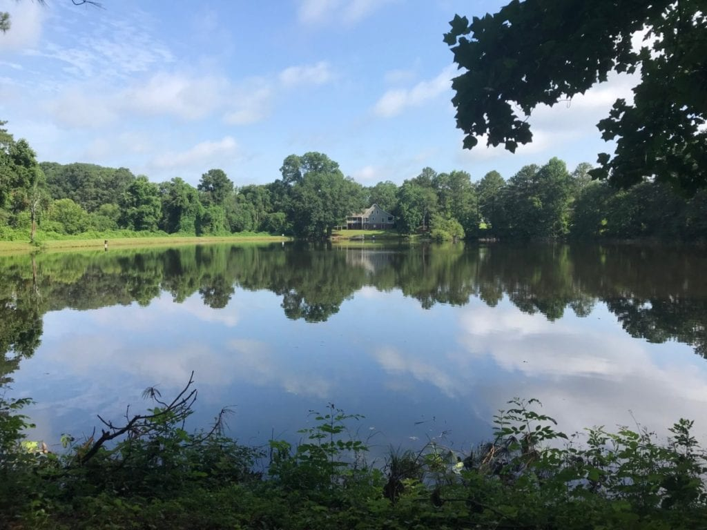 Lake at the new park on Ebenezer Road (photo by Rebecca Gaunt)