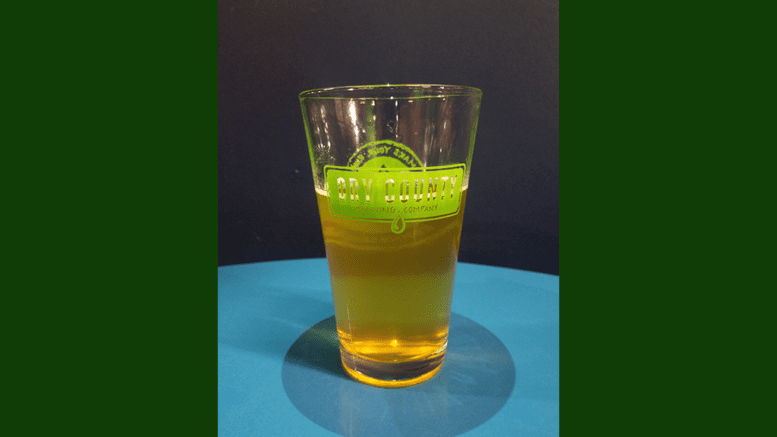 Dry County Brewing Company glass (photo by Alex Patton)