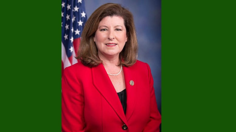 Karen Handel (photo from the congressional website. Public Domain)