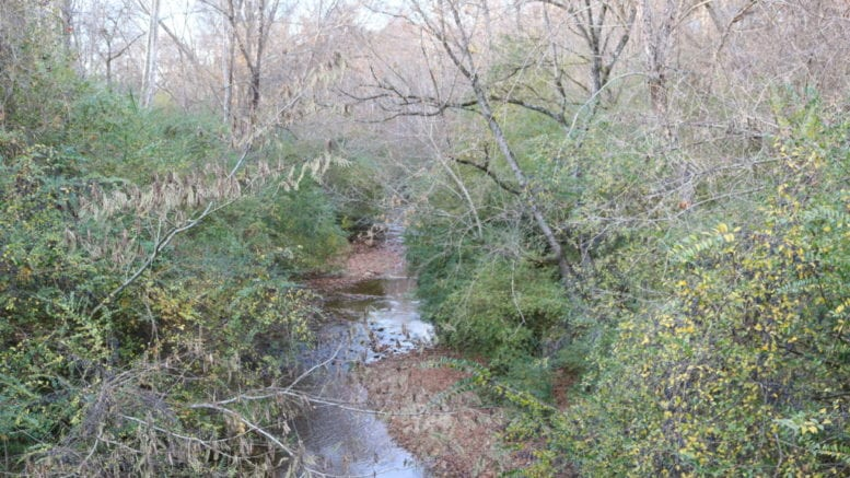 Nickajack Creek in video update water reclamation facility(photo by Larry Felton Johnson)