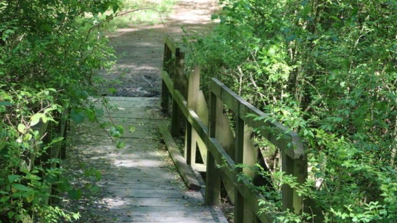 Bridge at the A.L. Burruss Nature Park (photo by Larry Felton Johnson)