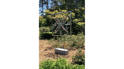 Sculpture of a design in a frame in a garden